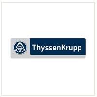 ThyssenKrupp Electrical Steel Ltd.